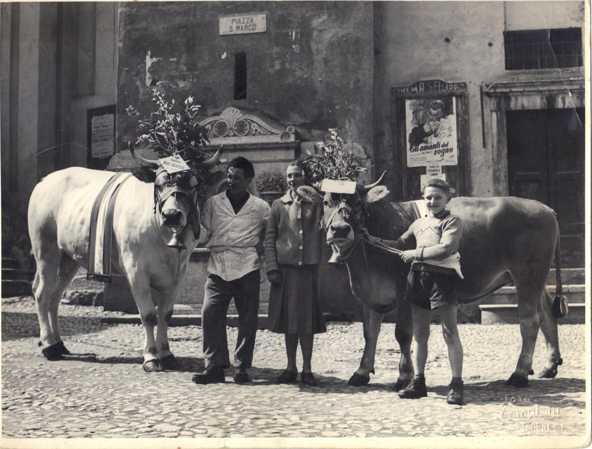 Peruchetti Vintage1
