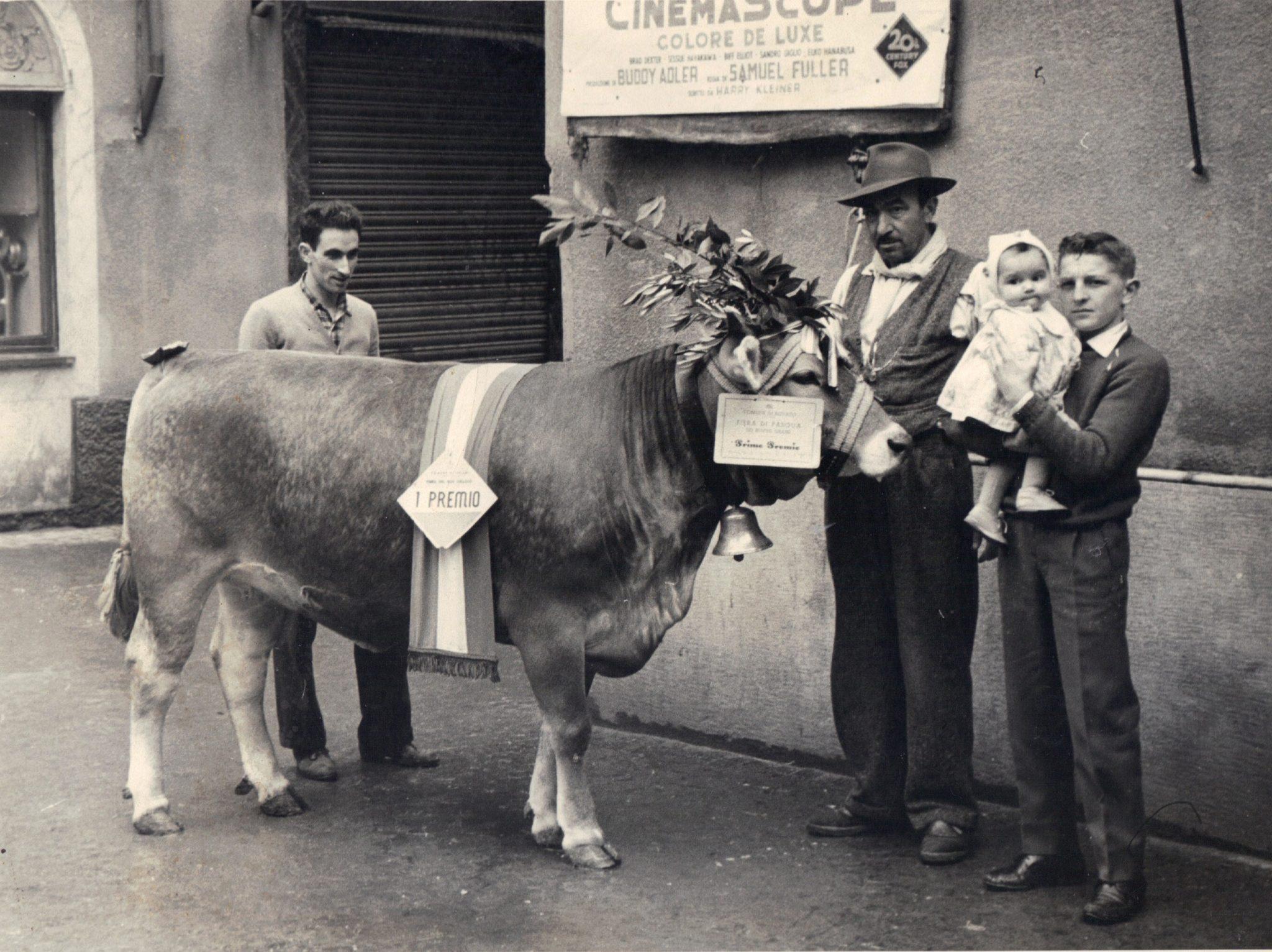 Peruchetti Vintage4