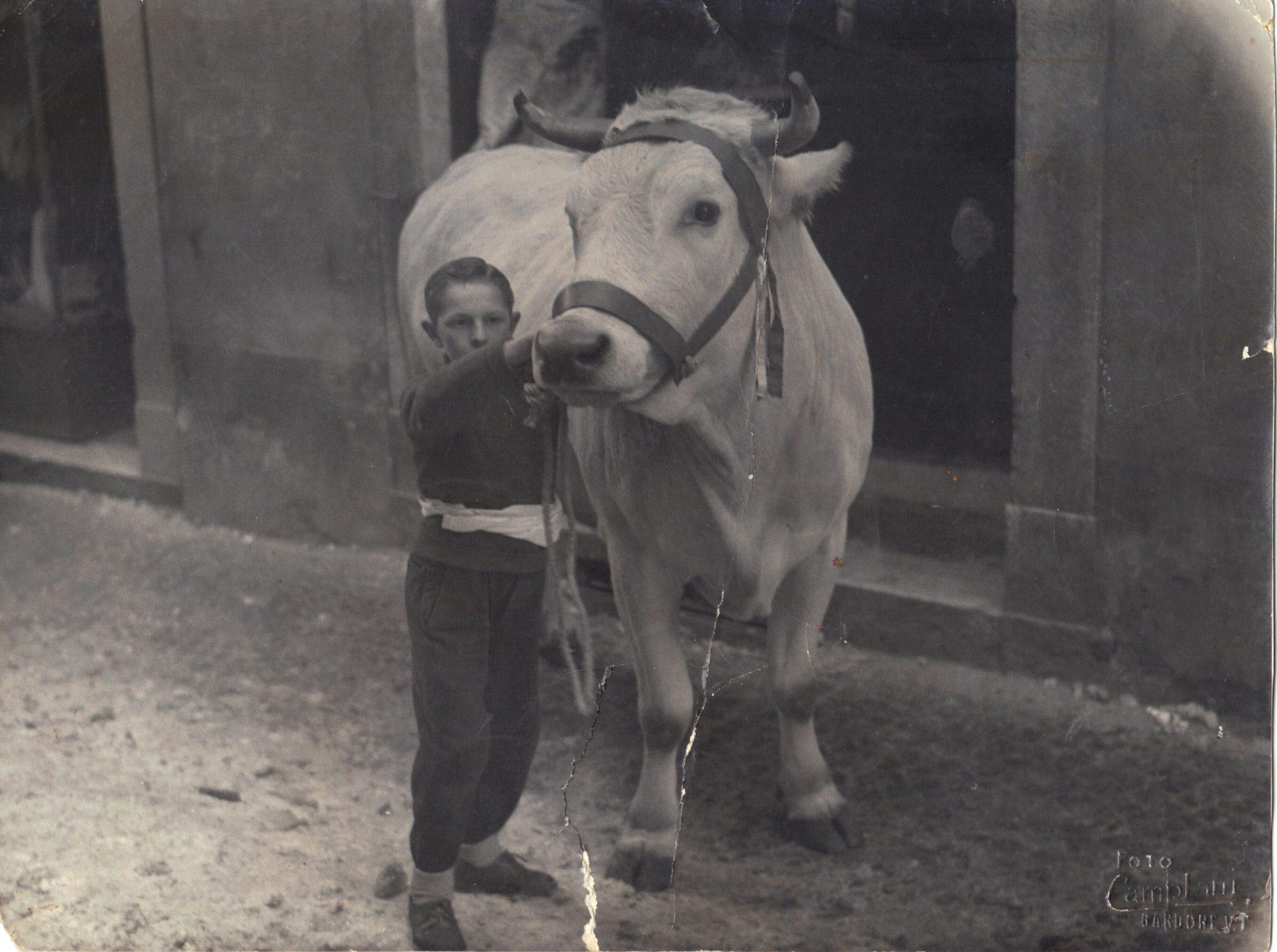 Peruchetti Vintage5