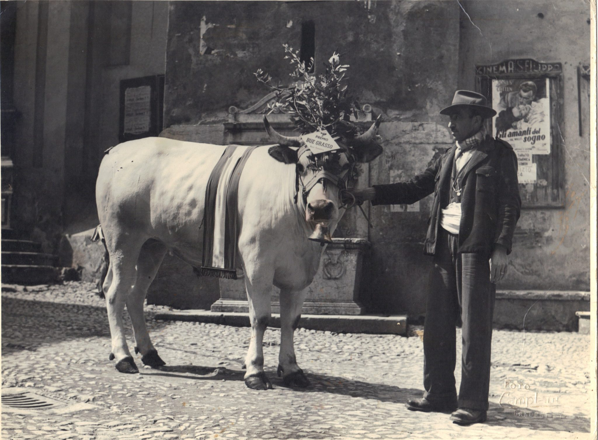 Peruchetti Vintage6